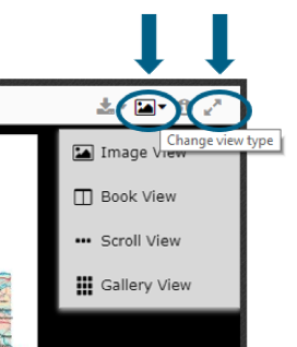 Change View Type